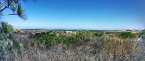 sweetwater national city pano salt marsh