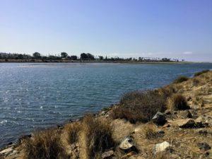 San Diego River Tidal Flats Ocean Beach