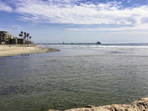 San Luis Rey River Inlet san diego birding
