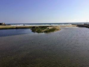 San Luis Rey River inlet spring san diego birding