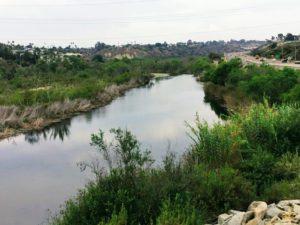 San Luis Rey River san diego birding