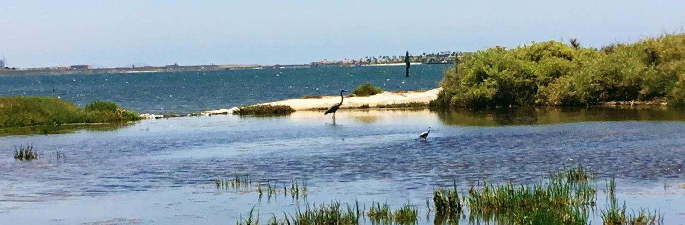South Bay San Diego