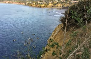 Kayaks Caves la jolla coast walk trail
