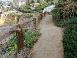 La Jolla Coast Walk Trail La Jolla Bluffs