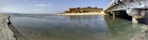 Dog-Beach-Pano