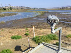 San Dieguito Lagoon Birdwatching Platform