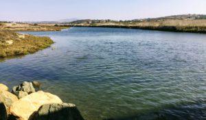 San Dieguito River Trail Midpoint Lagoon Del Mar