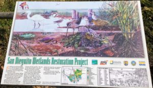 Wetlands Restoration Project San Dieguito River Trail