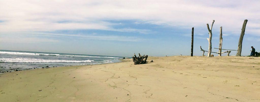 Surfing Trestles driftwood surf holder sandy beach