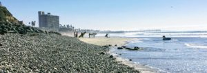 tourmaline surfers best surfing beaches in san diego