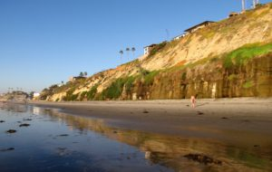Boneyards Beach Encinitas Best San Diego Hikes