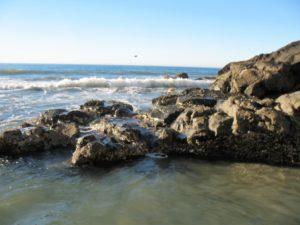 Dike Rock Scripps Beach La Jolla