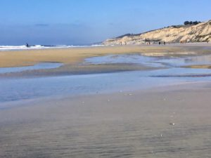 North Blacks Beach Best San Diego Hikes