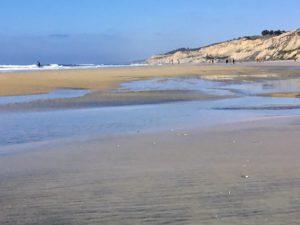North Blacks Beach Best San Diego Hikes