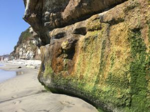 Rock Face Encinitas Best San Diego Hikes