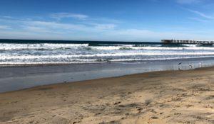 PB surf Shop Camp San Diego Surfing