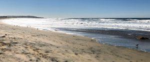 Surfari Surf School Pacific Beach