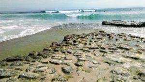 Swamis beach surfing rocky intertidal rocks waves ocean