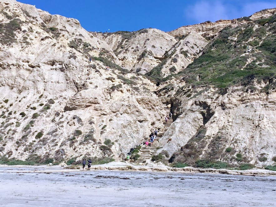 Blacks beach trail san diego beaches