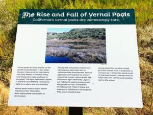 Agua Hedionda lagoon vernal pool information carlsbad