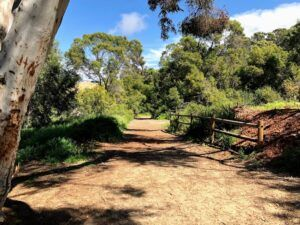 Annies Canyon trail march 19 san elijo lagoon