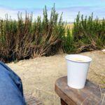 coffee time agua hedionda lagoon nature center carlsbad