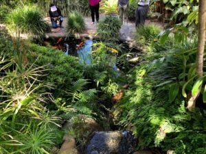 Koi Pond Self Realization Fellowship Meditation Garden