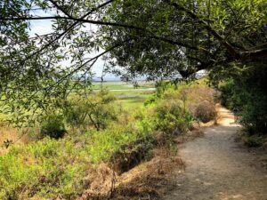North Rios Trail San Elijo Lagoon
