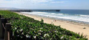 Pacific Beach Summer 2019 crystal pier