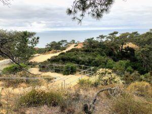 Torrey Pines State Natural Reserve ocean view