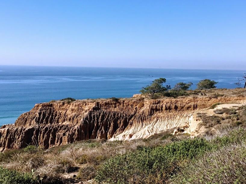 Torrey Pines Cliffs San Diego Beach Secrets