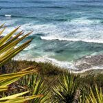 Above Swamis State Beach 2019 year in review