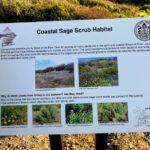 Coastal Sage Scrub Sign
