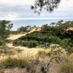 Ellen Browning Scripps Overlook Torrey Pines