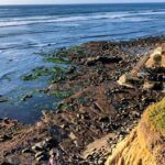 Garbage Beach 3-41 King Tide