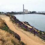 Hubbs trail may agua hedionda lagoon