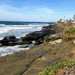 la jolla strand beach 2019 year in review