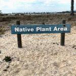 Native Garden Hospitality Point