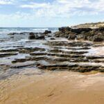 north tide pools crystal cove state park