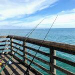 Oceanside Pier Fishing Poles August 2019