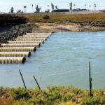 San Elijo Lagoon Restoration