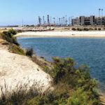 San Luis Rey Estuary 2019 year in review