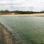 san mateo creek april 2019