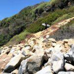 Swamis Bluff Surfer encinitas july 4