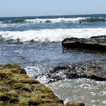 Swami's Reef