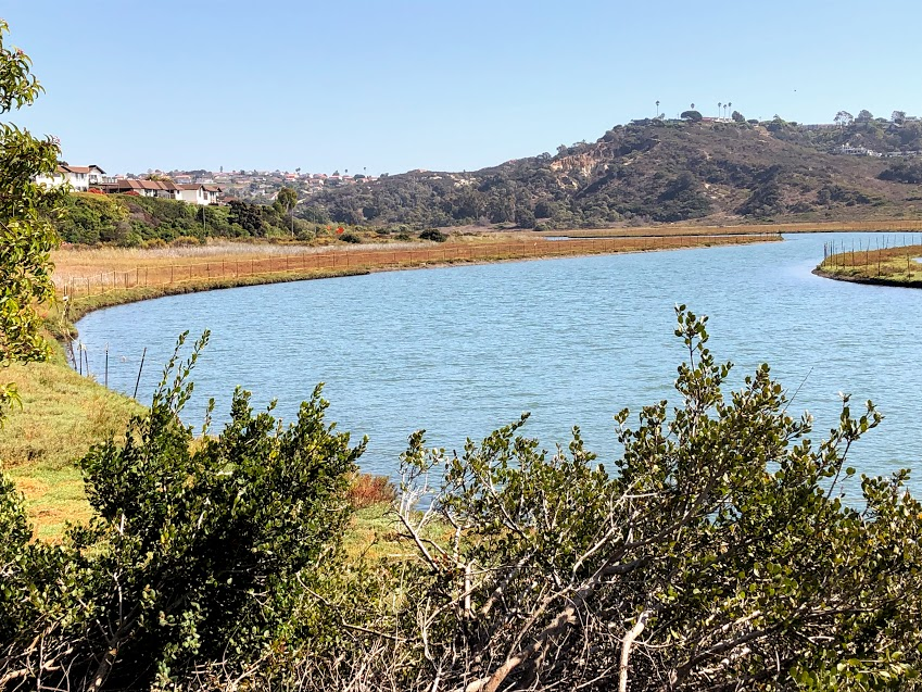 Nature collective trail san elijo lagoon
