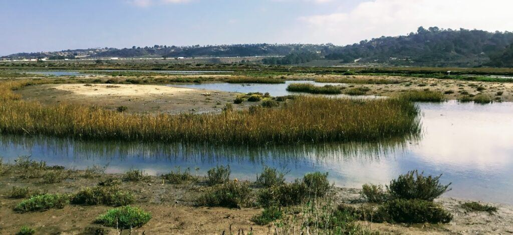 San Dieguito River san diego february events
