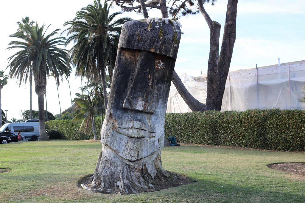torrey pine easter island statue swamis