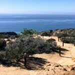 Torrey Pines State Natural Reserve whale watching spot