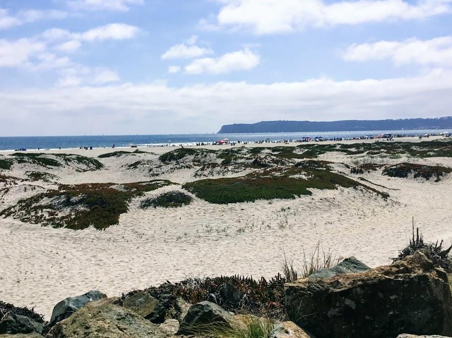 Coronado beach sand dunes ocean clouds